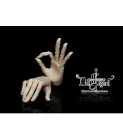 Doll Legend: ball-jointed hands 1/3
